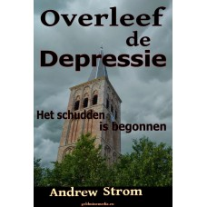 Survive the Depression ebook